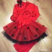 Mesa dulce Ladybug,6